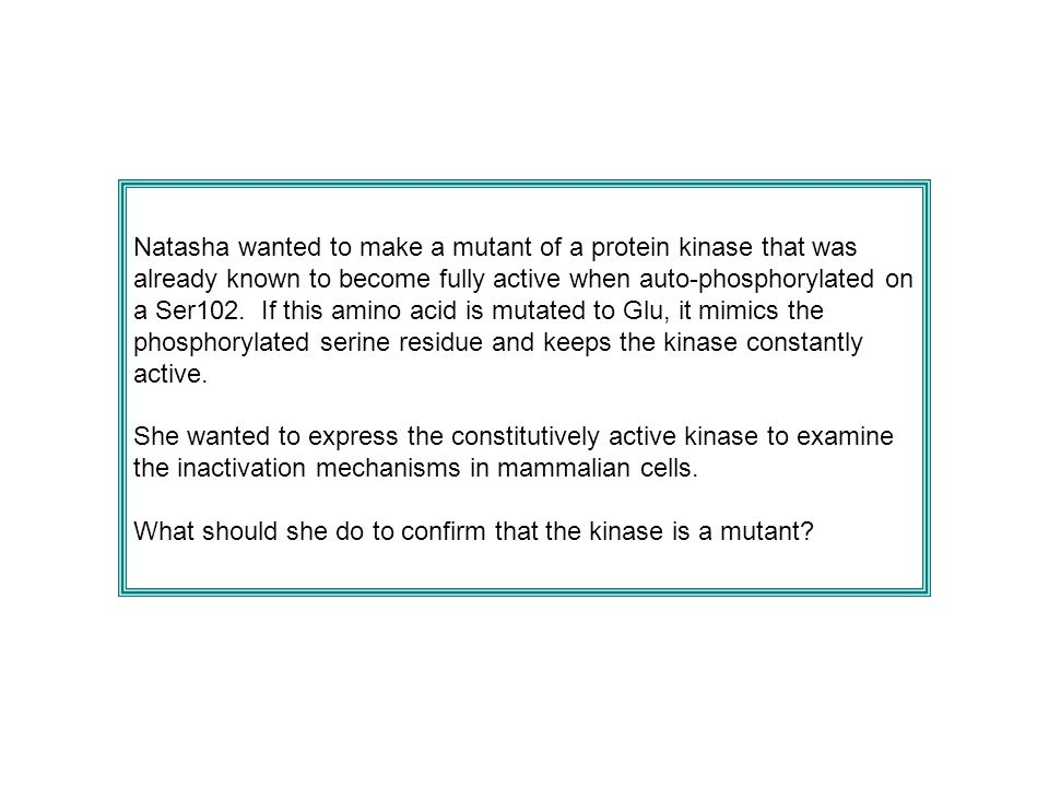 Natasha wanted to make a mutant of a protein kinase that was already known to become fully active when auto-phosphorylated on a Ser102. If this amino