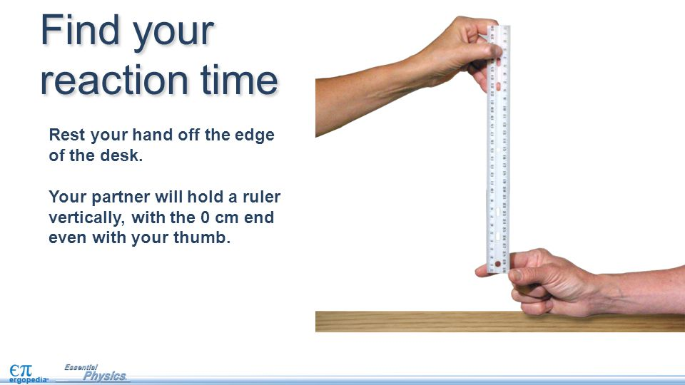 Rest your hand off the edge of the desk. Your partner will hold a ruler vertically, with the 0 cm end even with your thumb. Find your reaction time
