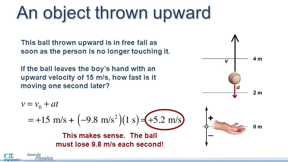 This ball thrown upward is in free fall as soon as the person is no longer touching it.