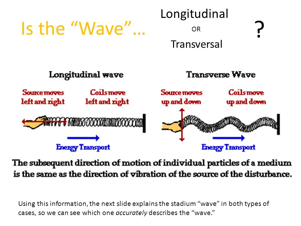 Is the Wave … Longitudinal OR Transversal .