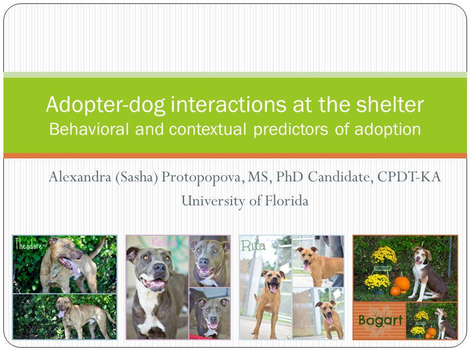 Alexandra (Sasha) Protopopova, MS, PhD Candidate, CPDT-KA University of Florida Adopter-dog interactions at the shelter Behavioral and contextual pred