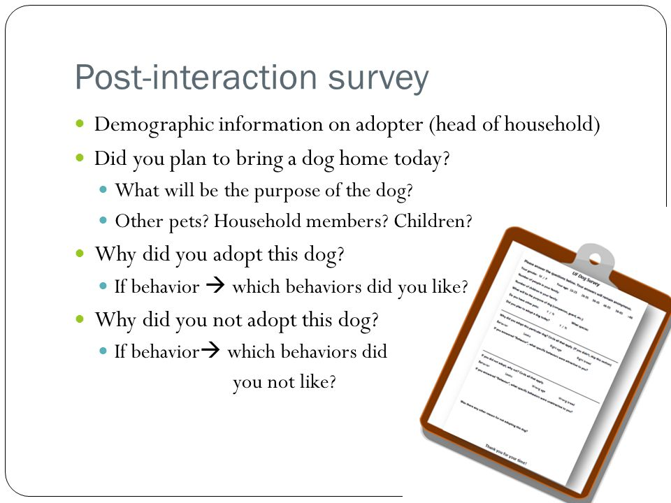 Post-interaction survey Demographic information on adopter (head of household) Did you plan to bring a dog home today.