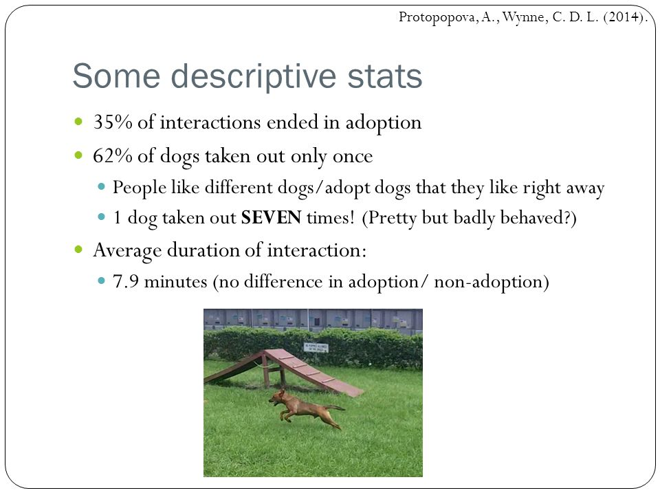 Some descriptive stats 35% of interactions ended in adoption 62% of dogs taken out only once People like different dogs/adopt dogs that they like right away 1 dog taken out SEVEN times.