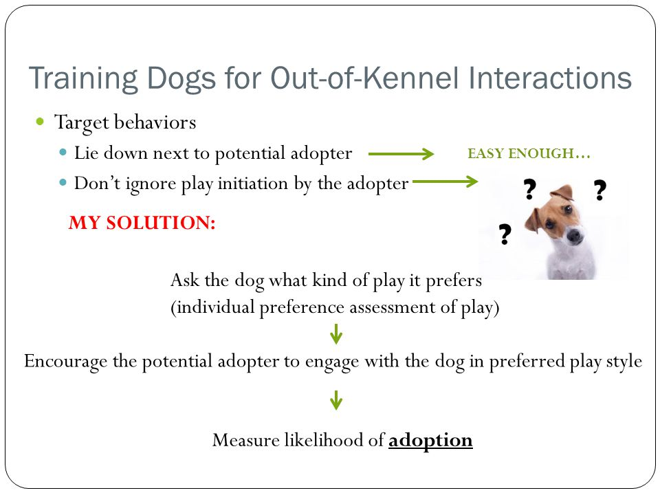 Training Dogs for Out-of-Kennel Interactions Target behaviors Lie down next to potential adopter Don't ignore play initiation by the adopter EASY ENOUGH… MY SOLUTION: Ask the dog what kind of play it prefers (individual preference assessment of play) Encourage the potential adopter to engage with the dog in preferred play style Measure likelihood of adoption