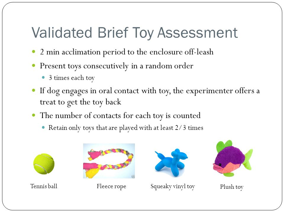 Validated Brief Toy Assessment 2 min acclimation period to the enclosure off-leash Present toys consecutively in a random order 3 times each toy If dog engages in oral contact with toy, the experimenter offers a treat to get the toy back The number of contacts for each toy is counted Retain only toys that are played with at least 2/3 times Tennis ballFleece ropeSqueaky vinyl toy Plush toy