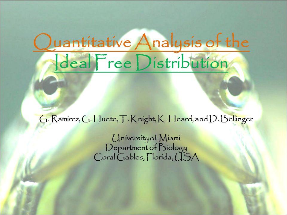 Quantitative Analysis of the Ideal Free Distribution G.