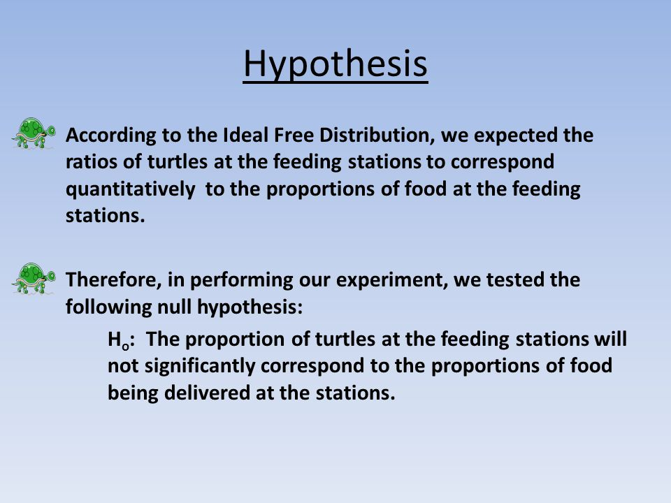 What we did In this experiment, we tested Ideal Free Distribution by using the turtles as our experimental species.