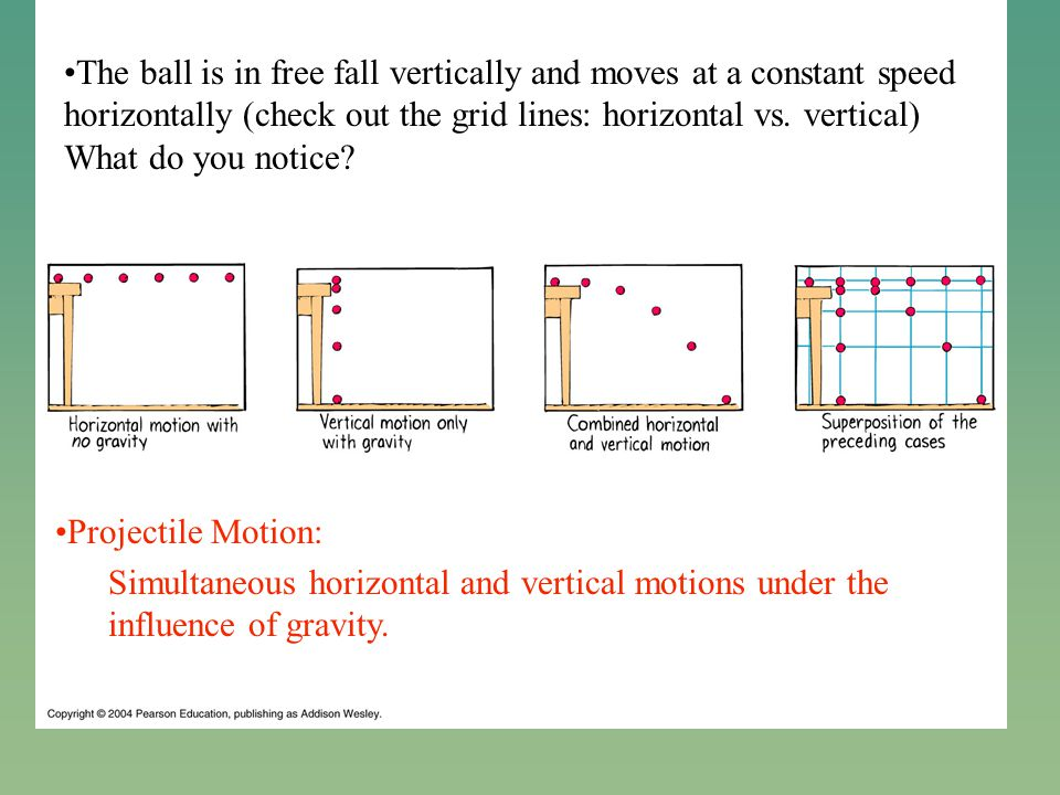 The ball is in free fall vertically and moves at a constant speed horizontally (check out the grid lines: horizontal vs.