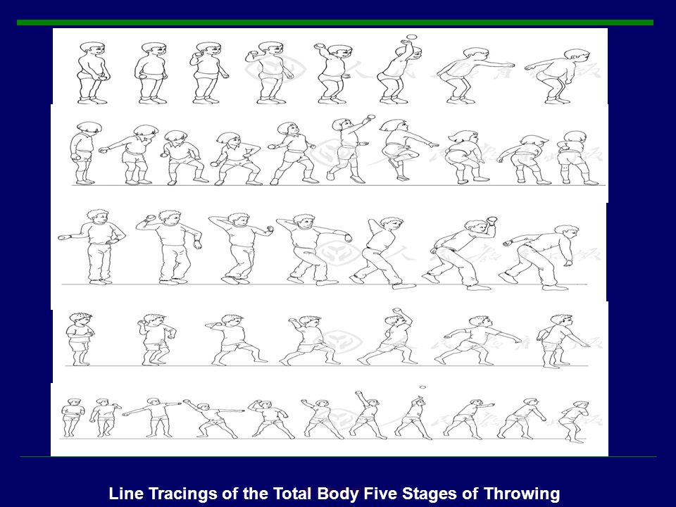 第八章 第四节 Line Tracings of the Total Body Five Stages of Throwing