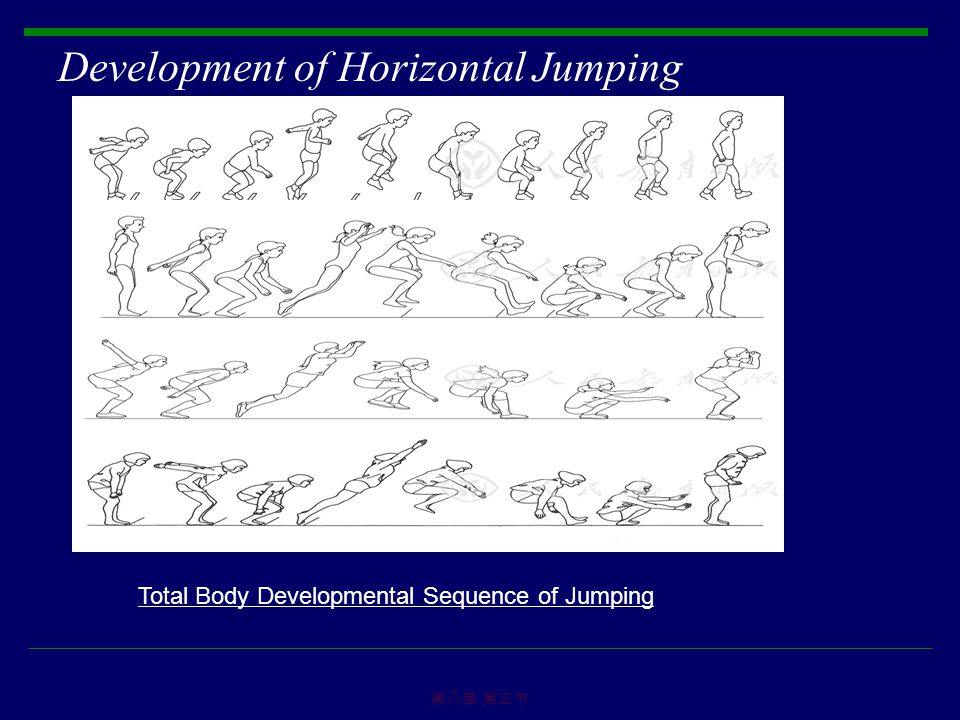 Development of Horizontal Jumping 第八章 第五节 Total Body Developmental Sequence of Jumping