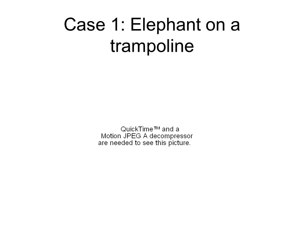 Case 1: Elephant on a trampoline