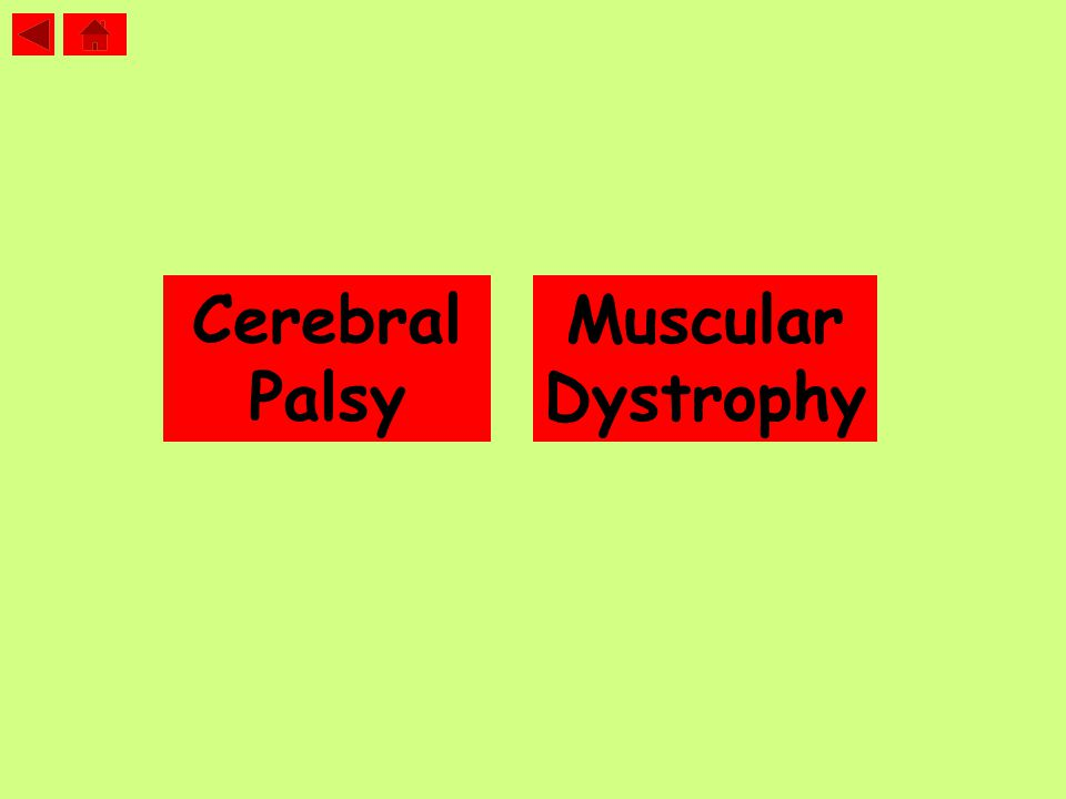 Cerebral Palsy Muscular Dystrophy