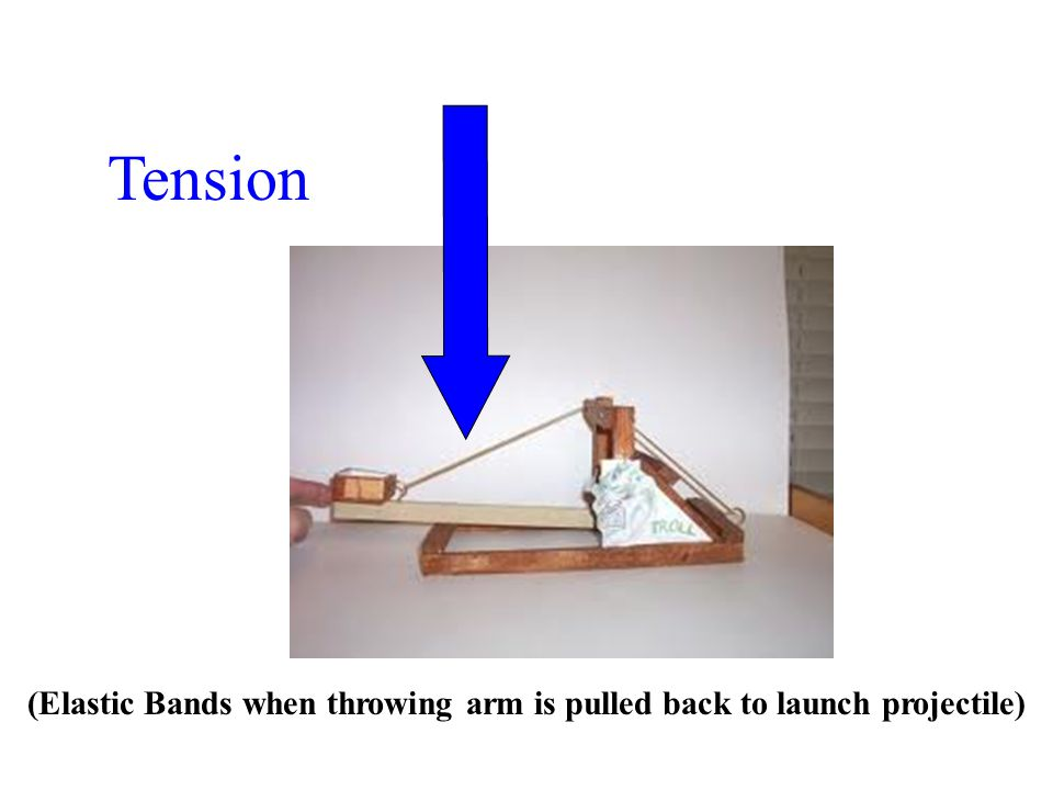Tension (Elastic Bands when throwing arm is pulled back to launch projectile)