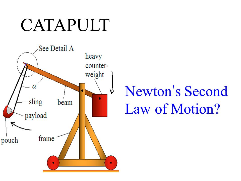 Newton ' s Second Law of Motion CATAPULT