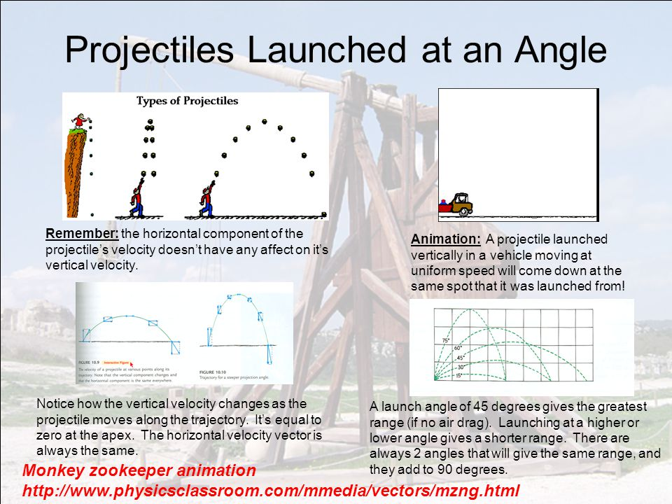 Projectiles Launched at an Angle Monkey zookeeper animation http://www.physicsclassroom.com/mmedia/vectors/mzng.html Remember: the horizontal component of the projectile's velocity doesn't have any affect on it's vertical velocity.