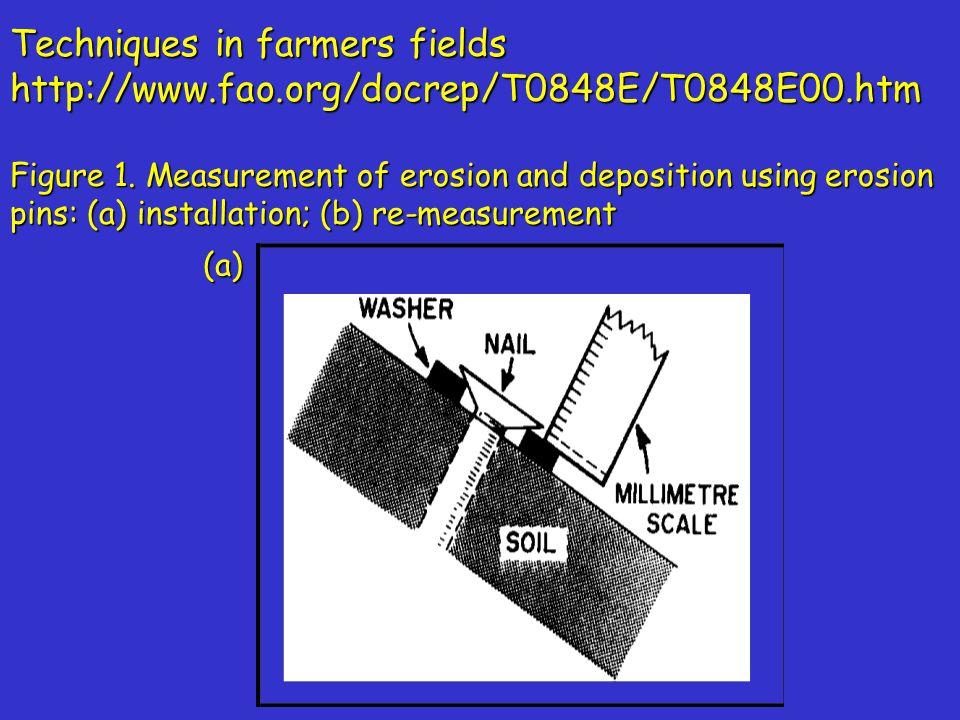 Measurement using vegetation