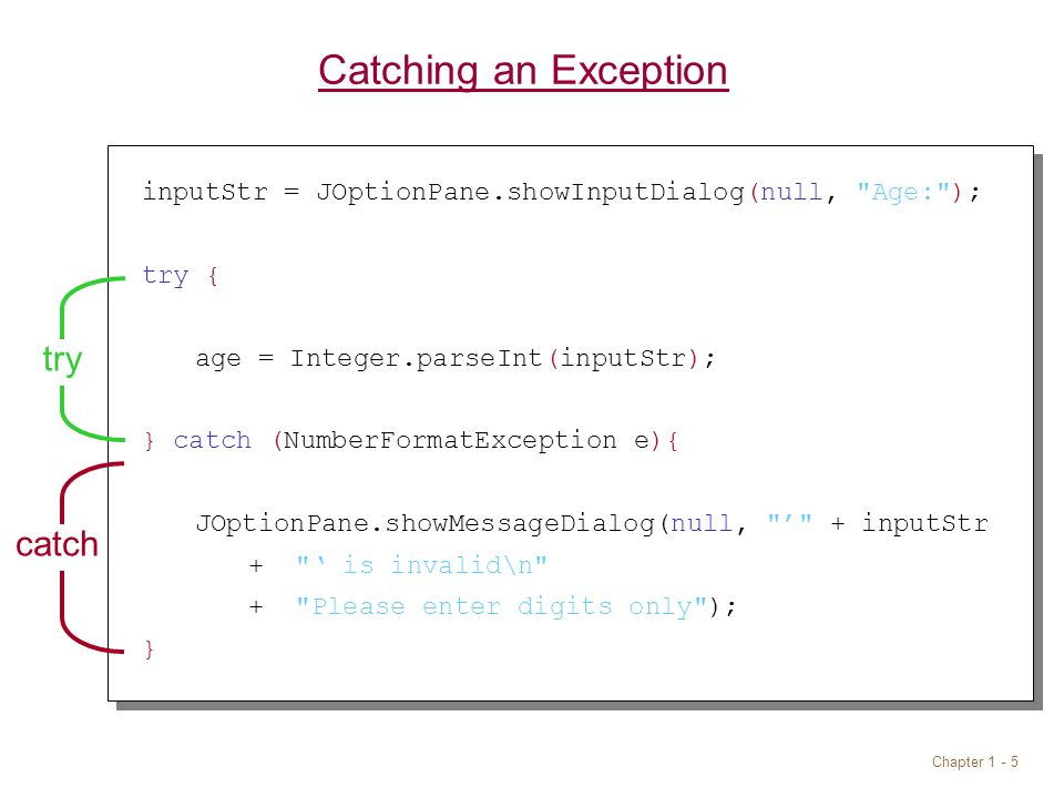 Chapter 1 - 5 Catching an Exception inputStr = JOptionPane.showInputDialog(null, Age: ); try { age = Integer.parseInt(inputStr); } catch (NumberFormatException e){ JOptionPane.showMessageDialog(null, ' + inputStr + ' is invalid\n + Please enter digits only ); } trycatch