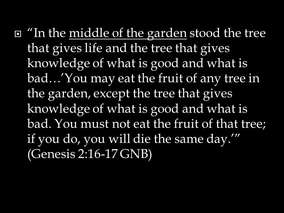 """ """"In the middle of the garden stood the tree that gives life and the tree that gives knowledge of what is good and what is bad…'You may eat the fruit"""