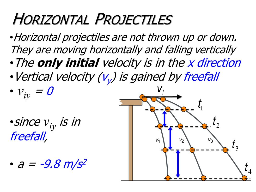 H ORIZONTAL P ROJECTILES Horizontal projectiles are not thrown up or down.