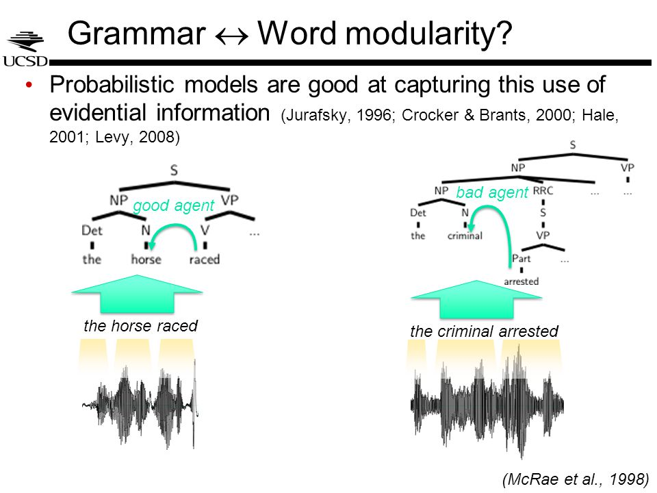 Grammar  Word modularity? Probabilistic models are good at capturing this use of evidential information (Jurafsky, 1996; Crocker & Brants, 2000; Hal