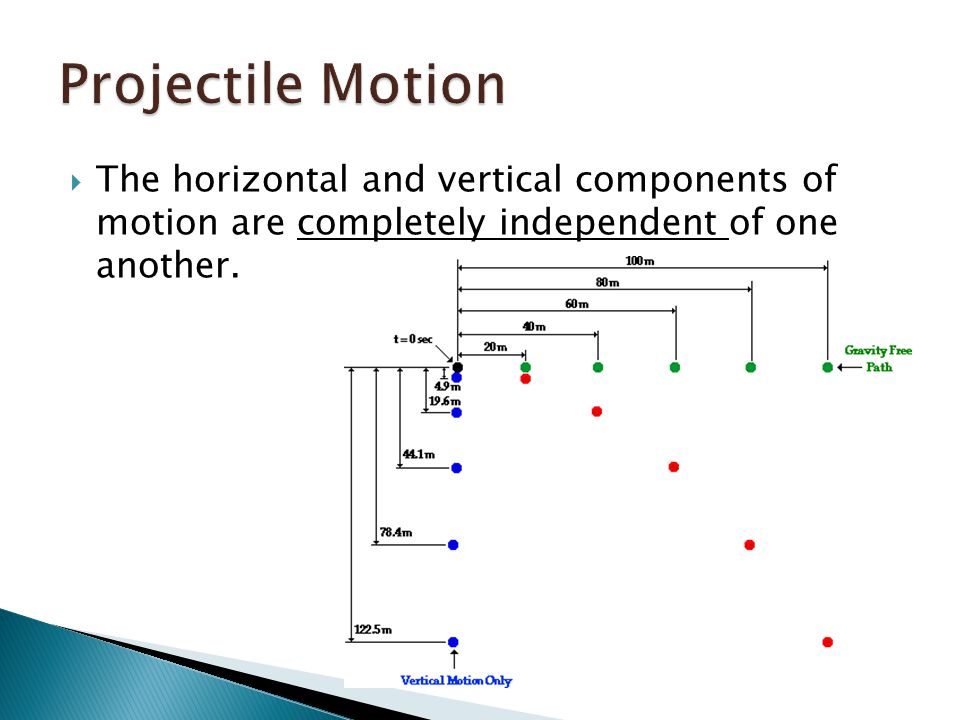  The horizontal and vertical components of motion are completely independent of one another.