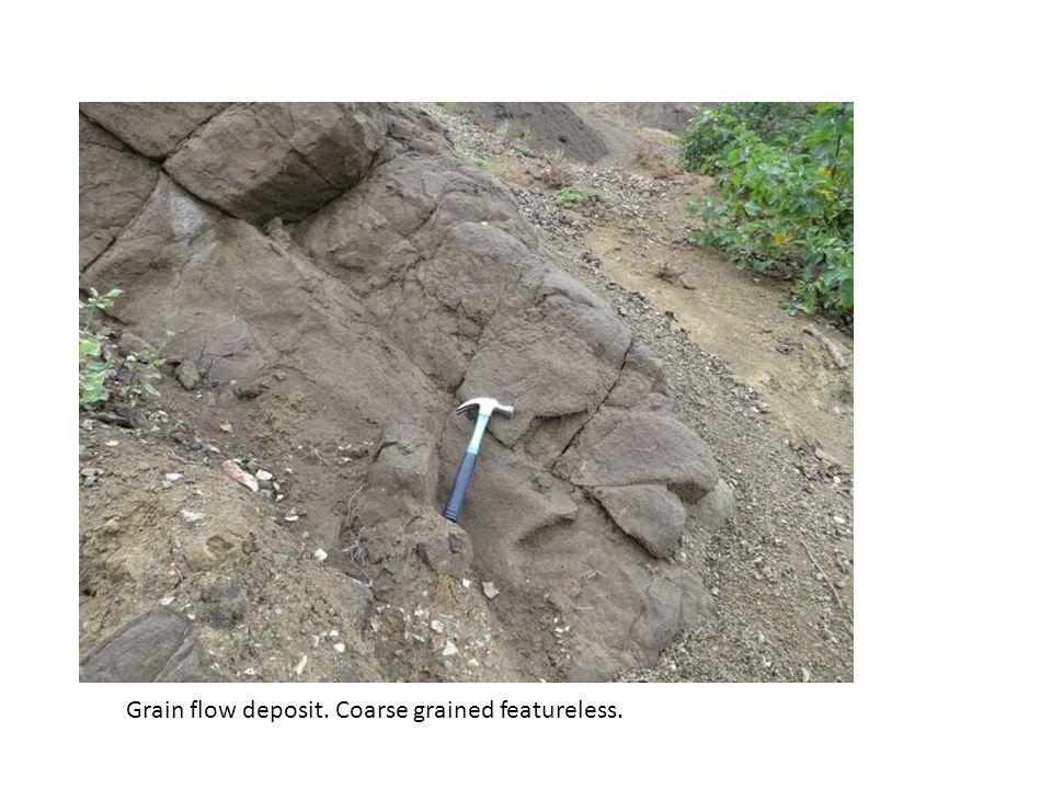 Grain flow deposit. Coarse grained featureless.