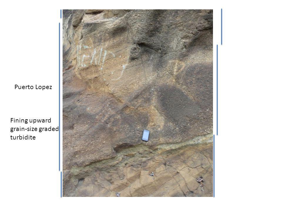 Fining upward grain-size graded turbidite Puerto Lopez