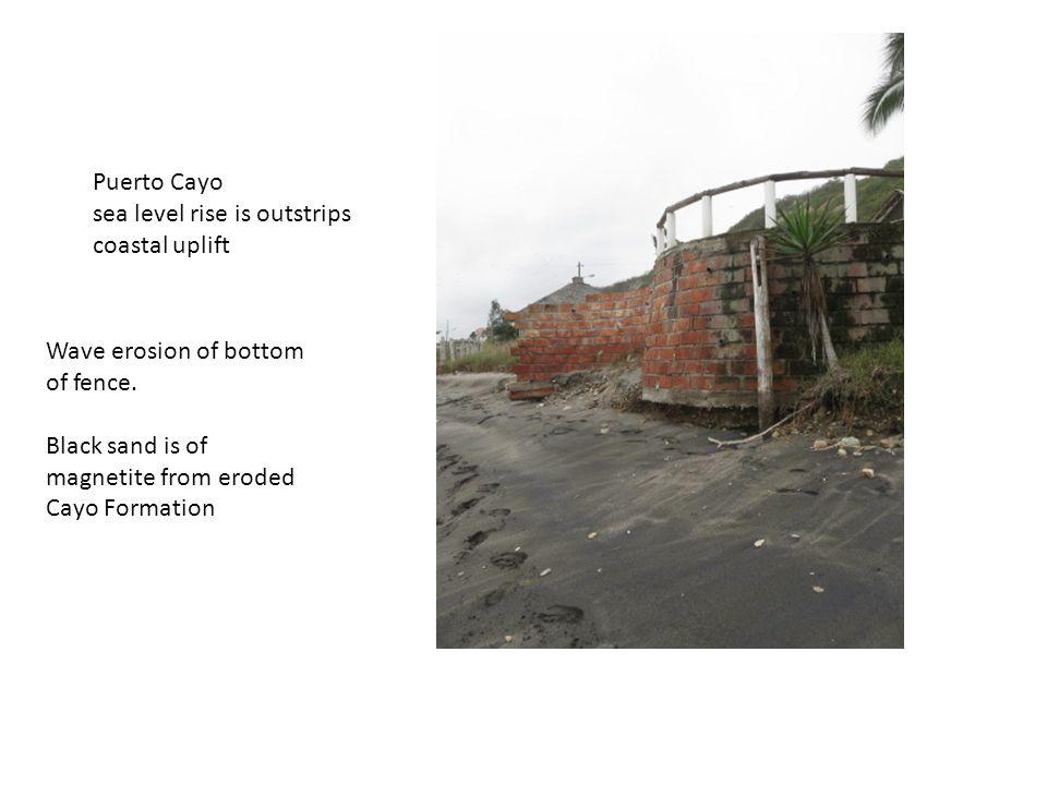 Wave erosion of bottom of fence.