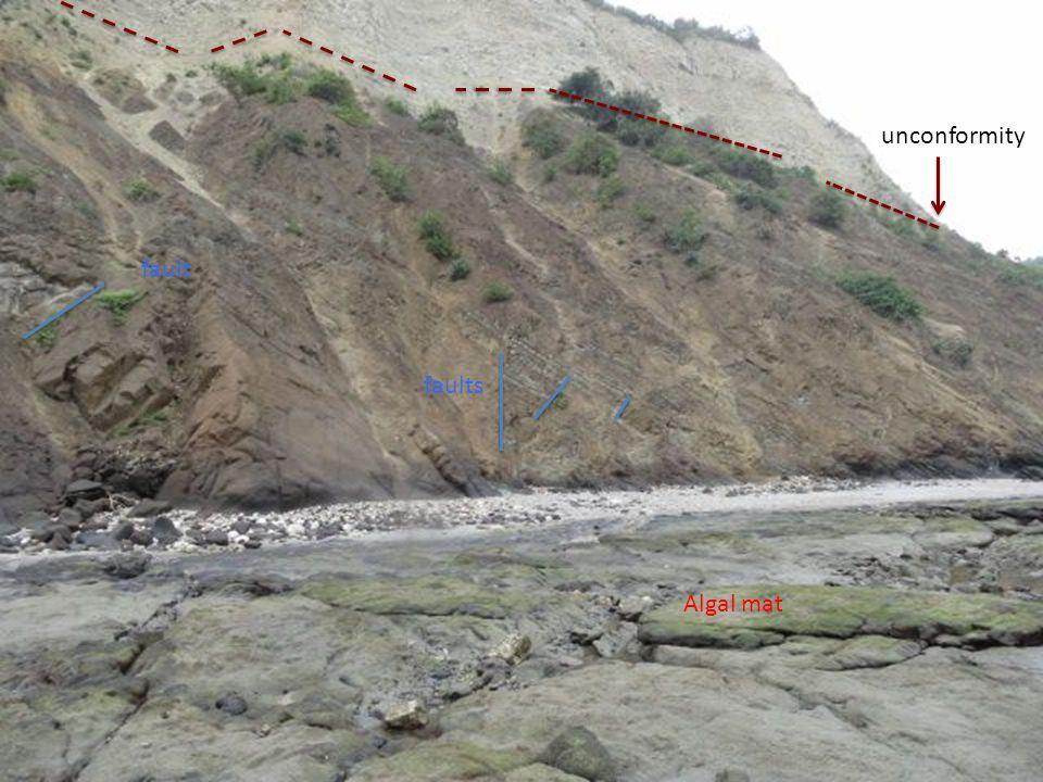 unconformity faults fault Algal mat