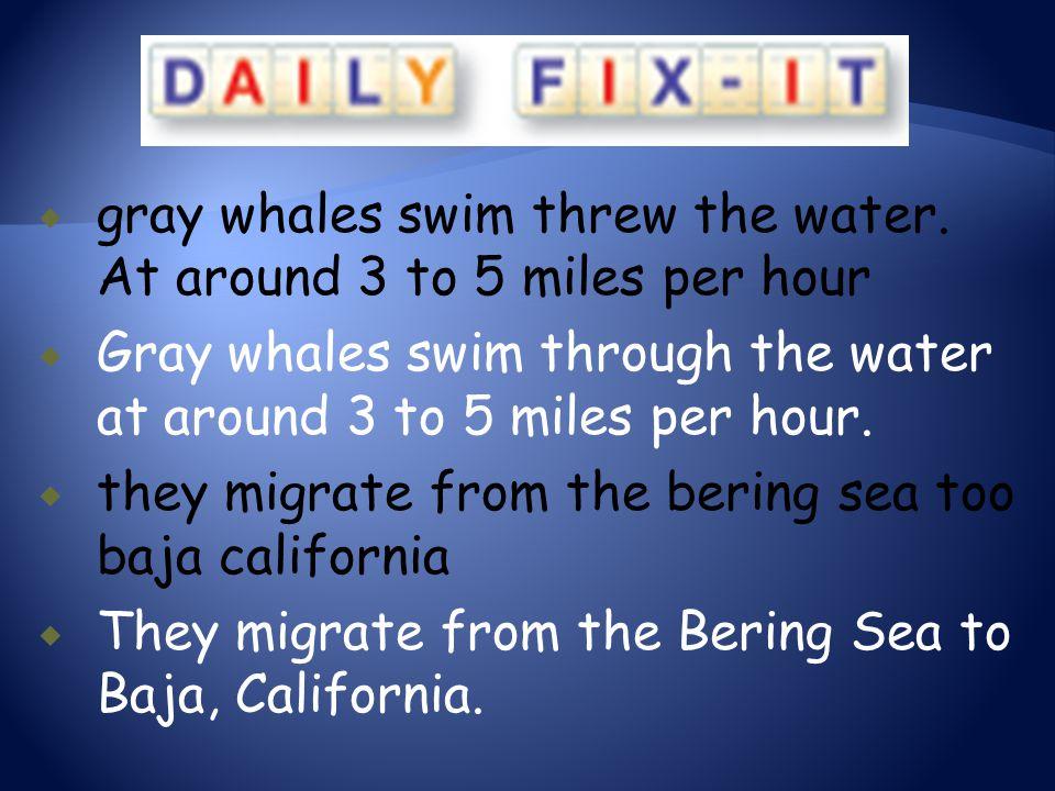  gray whales swim threw the water. At around 3 to 5 miles per hour  Gray whales swim through the water at around 3 to 5 miles per hour.  they migra