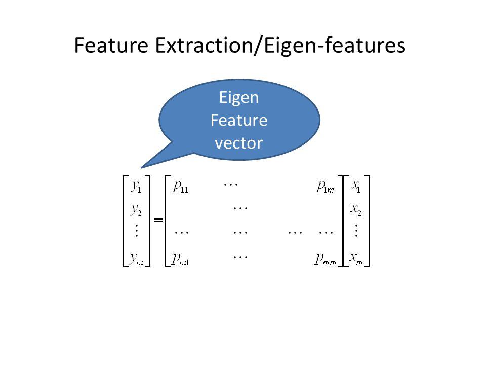 Feature Extraction/Eigen-features Eigen Feature vector