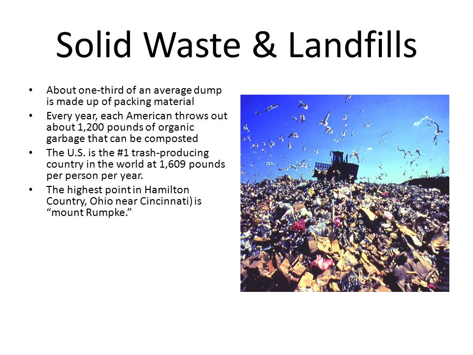 Miscellaneous Recycling Facts Rainforest are being cut down at the rate of 100 acres per minute.