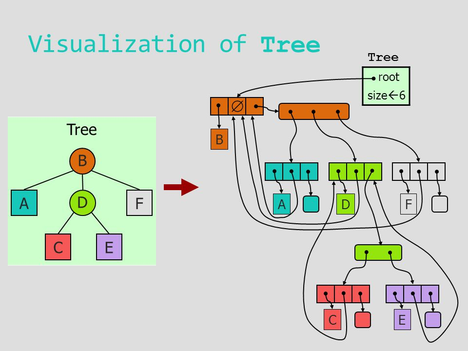 Tree D  Visualization of Tree B D A CE F B AF CE Tree root size  6