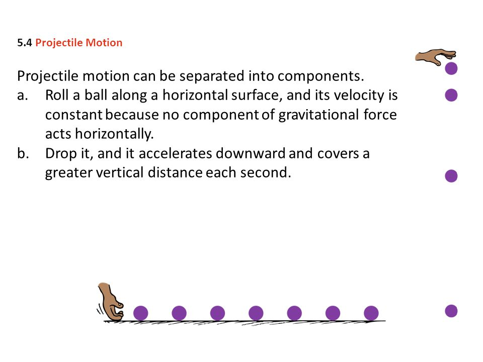 Projectile motion can be separated into components. a.Roll a ball along a horizontal surface, and its velocity is constant because no component of gra