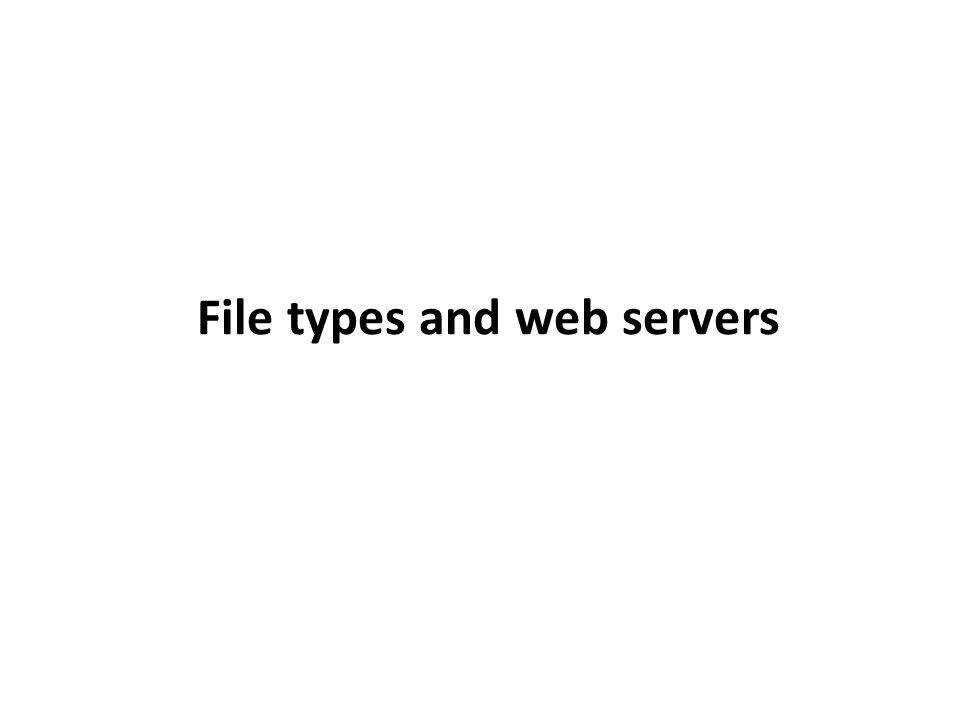 File types and web servers