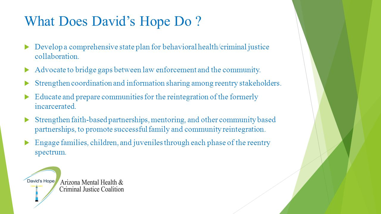 What Does David's Hope Do ?  Develop a comprehensive state plan for behavioral health/criminal justice collaboration.  Advocate to bridge gaps betwe