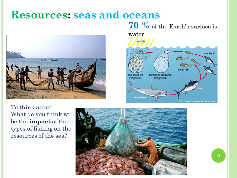 To think about: What do you think will be the impact of these types of fishing on the resources of the sea.