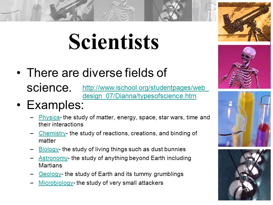 Scientists There are diverse fields of science.