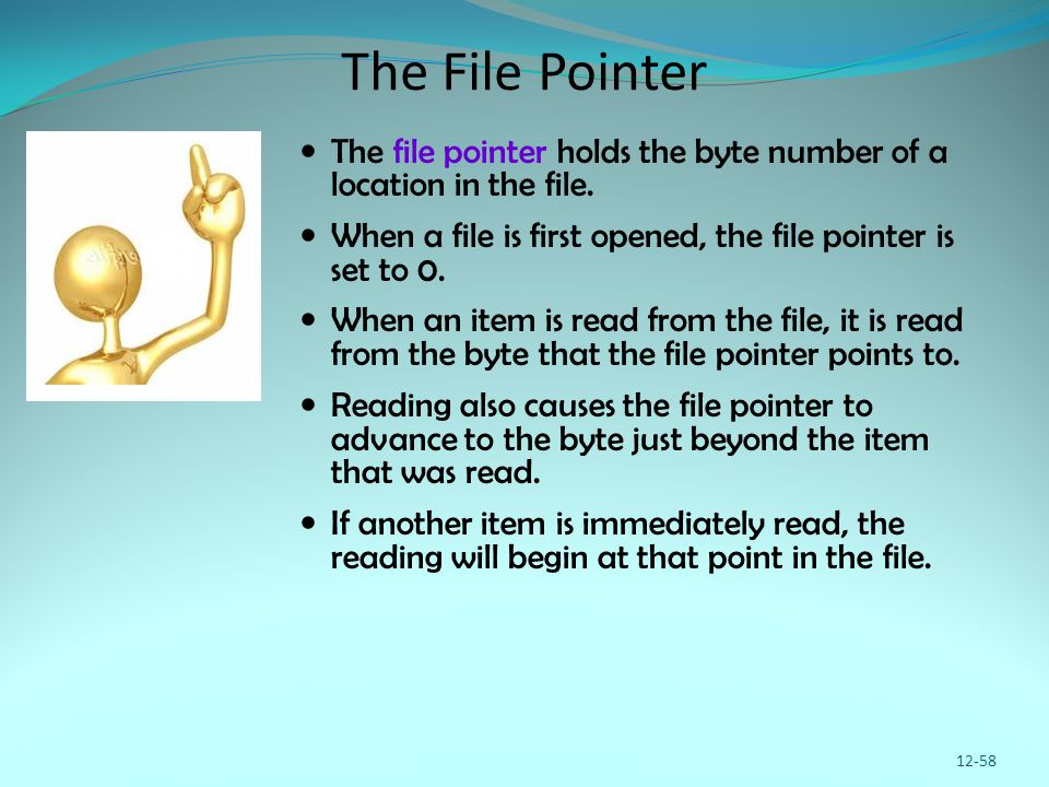 The File Pointer The file pointer holds the byte number of a location in the file. When a file is first opened, the file pointer is set to 0. When an