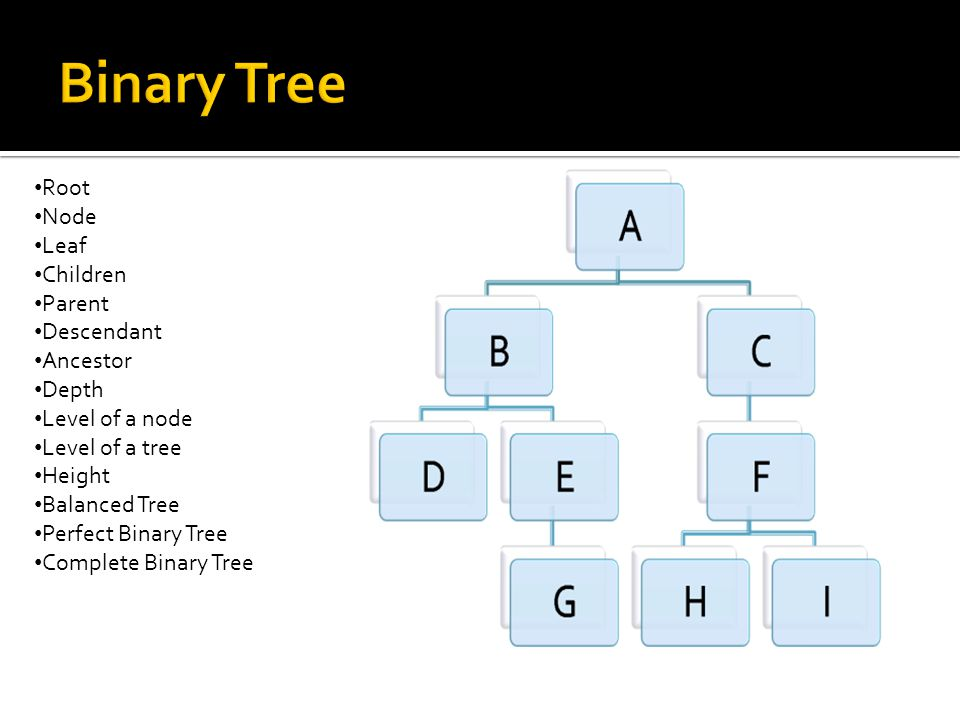Root Node Leaf Children Parent Descendant Ancestor Depth Level of a node Level of a tree Height Balanced Tree Perfect Binary Tree Complete Binary Tree