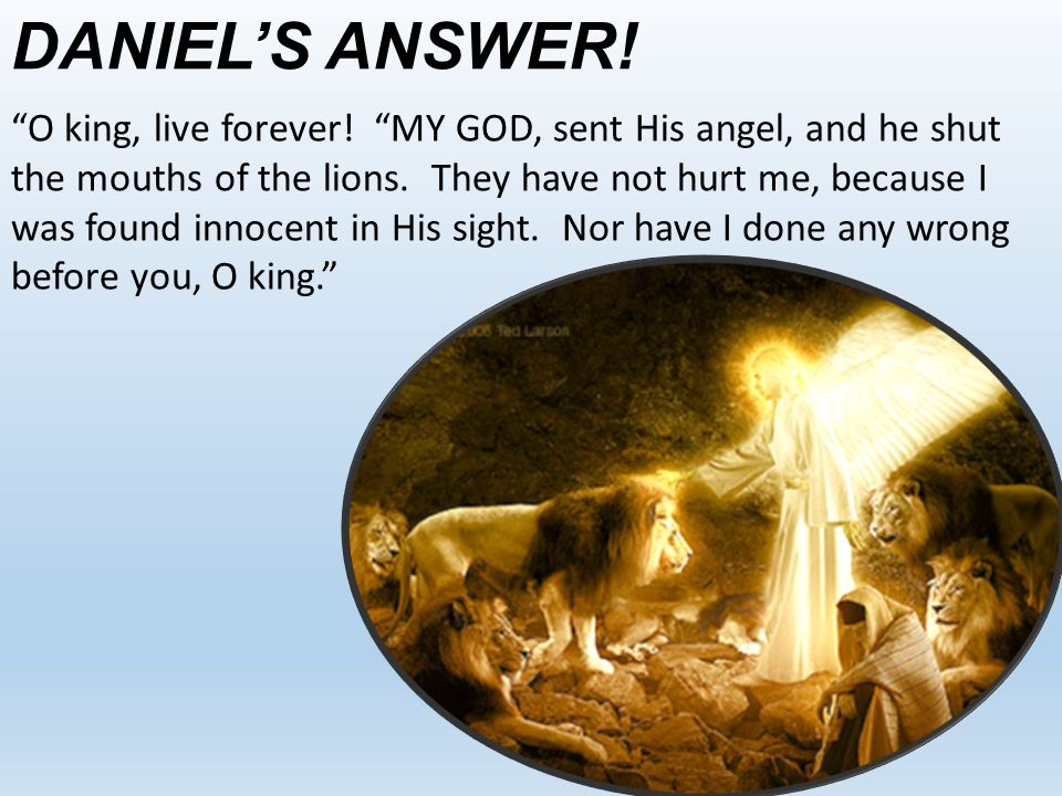 "DANIEL'S ANSWER! ""O king, live forever! ""MY GOD, sent His angel, and he shut the mouths of the lions. They have not hurt me, because I was found innoc"