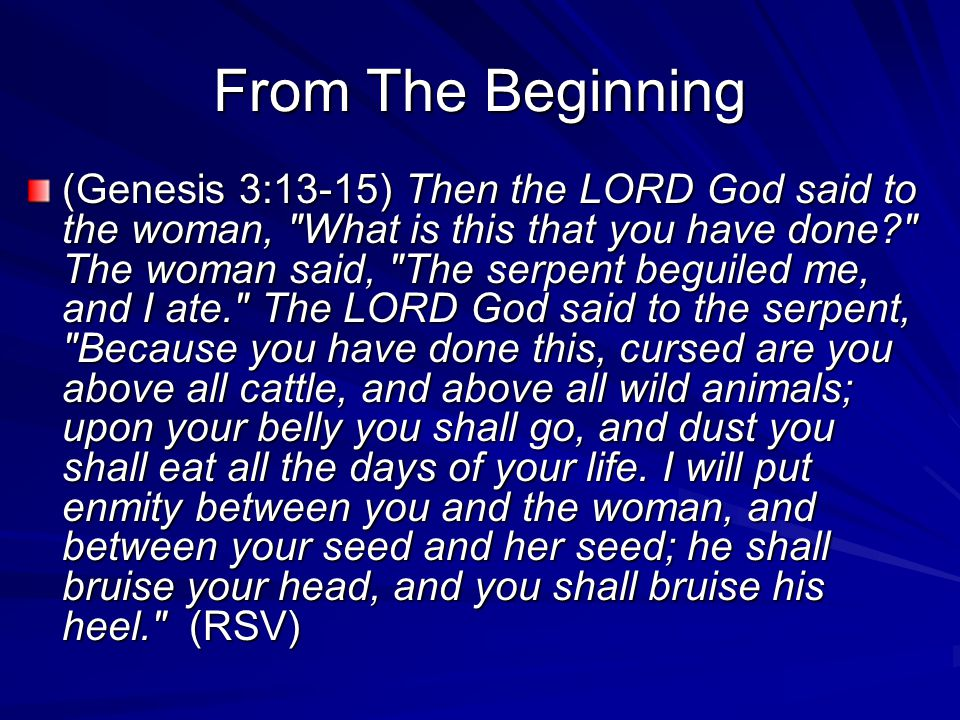 From The Beginning (Genesis 3:13-15) Then the LORD God said to the woman,