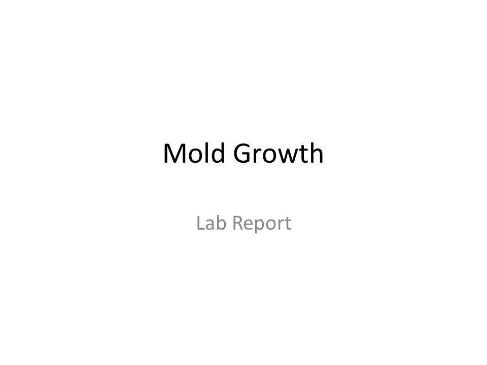 What Conditions Help Mold Grow.