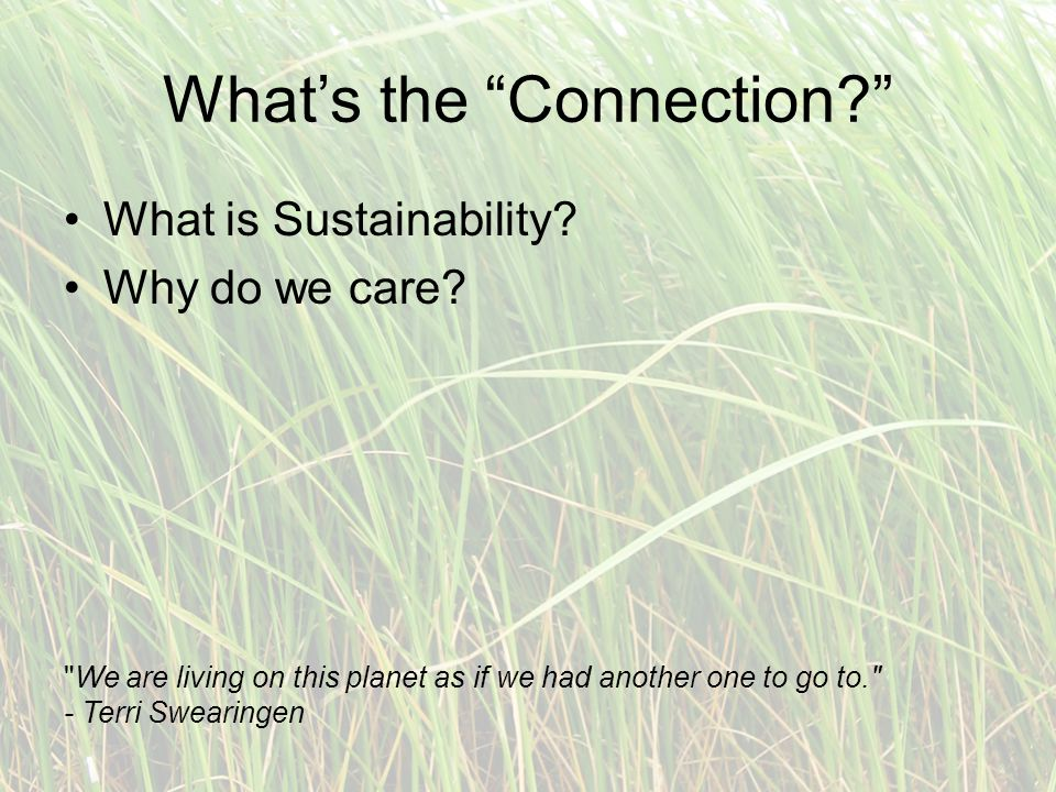 What's the Connection What is Sustainability. Why do we care.
