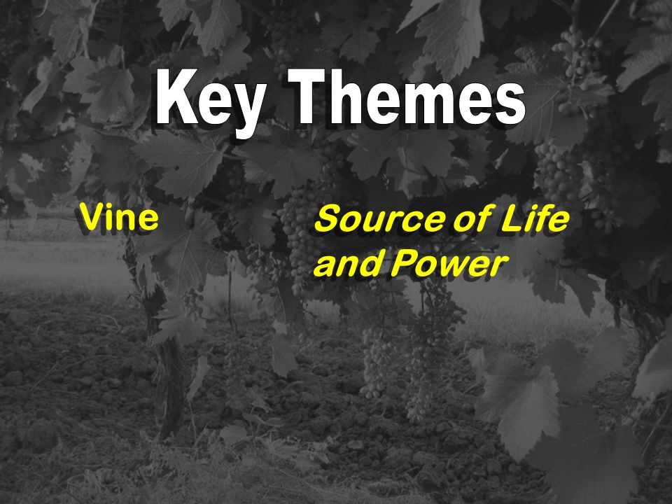 Vine Source of Life and Power
