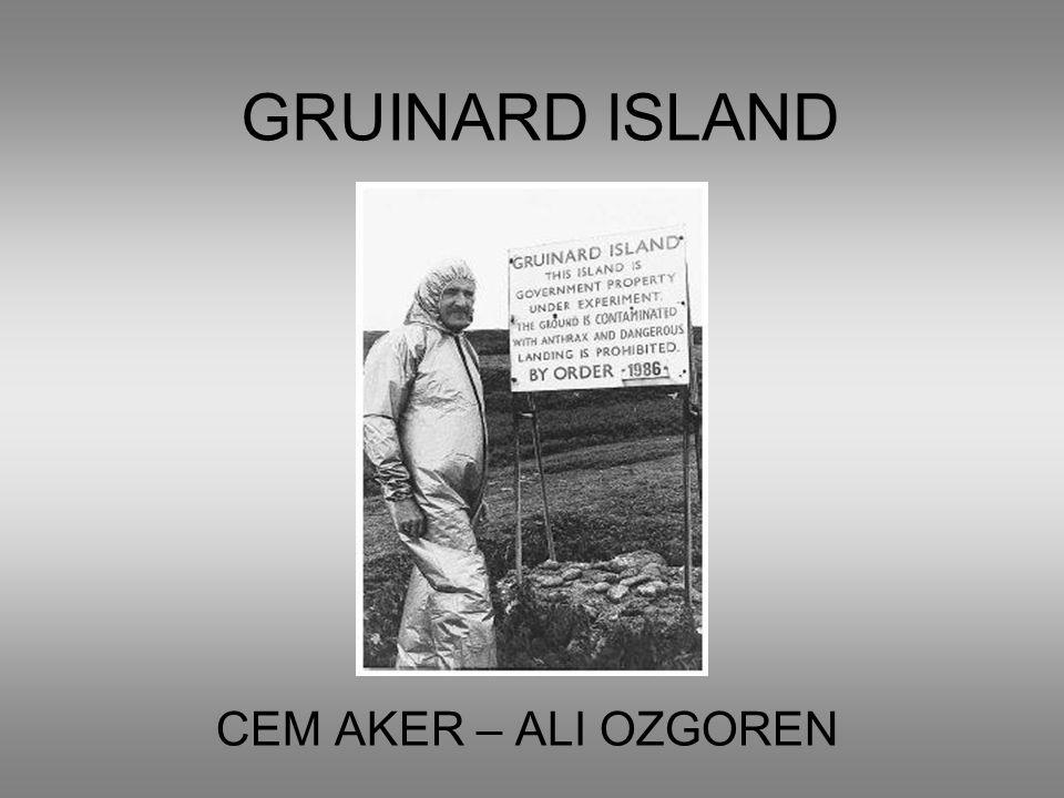 GRUINARD ISLAND CEM AKER – ALI OZGOREN