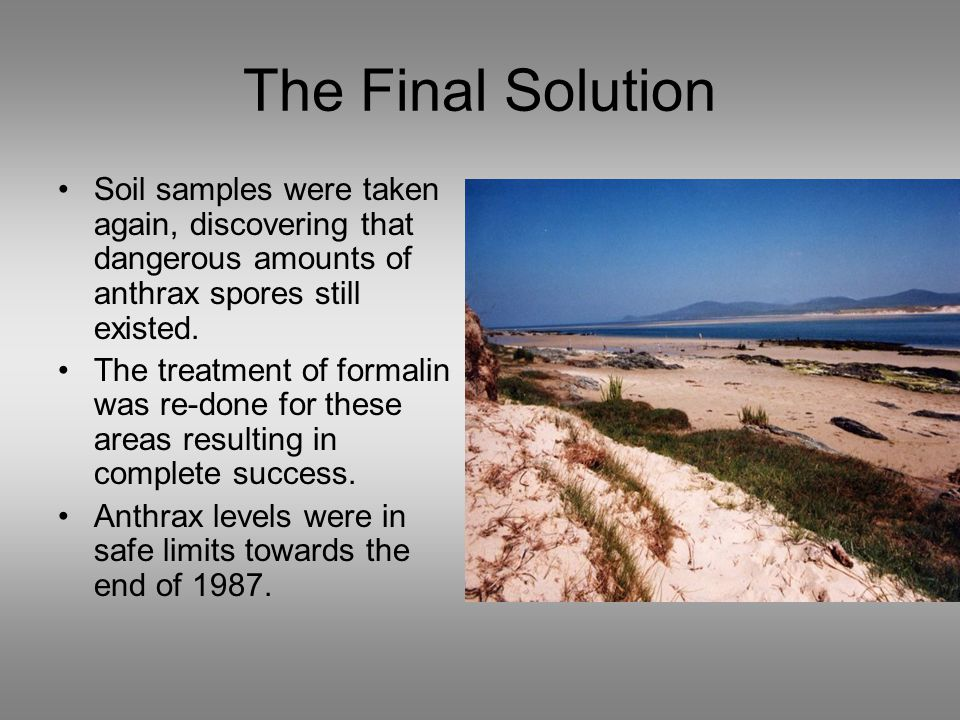 The Final Solution Soil samples were taken again, discovering that dangerous amounts of anthrax spores still existed.