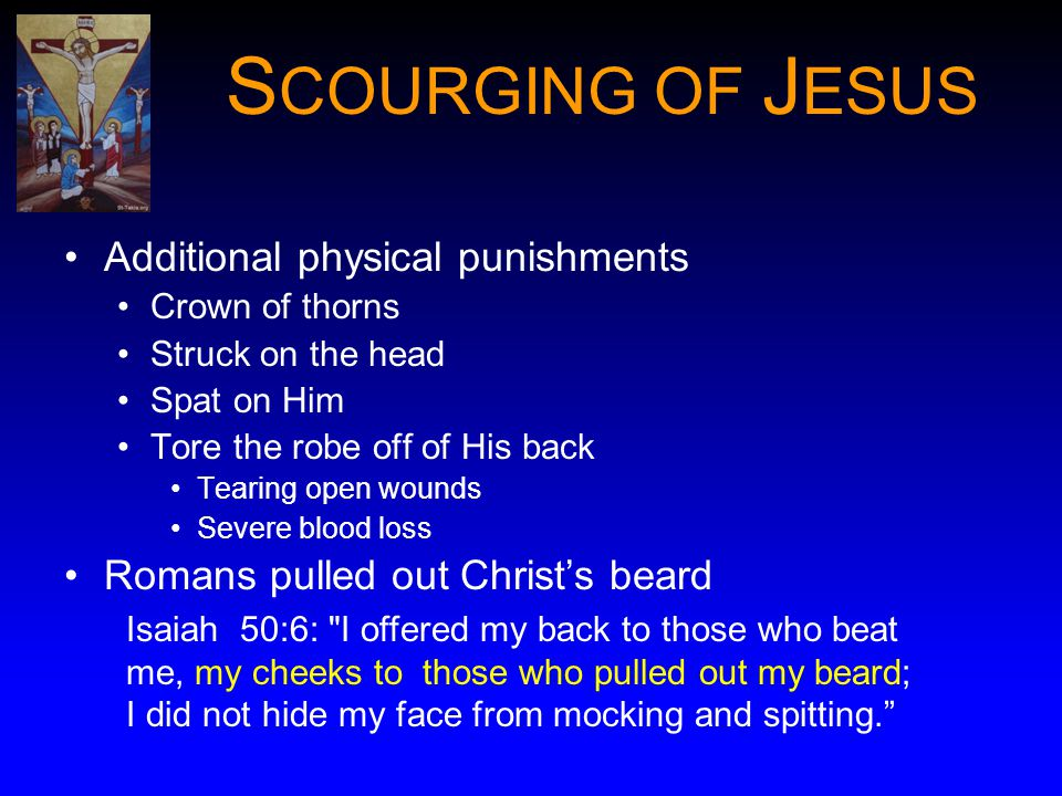 S COURGING OF J ESUS Additional physical punishments Crown of thorns Struck on the head Spat on Him Tore the robe off of His back Tearing open wounds