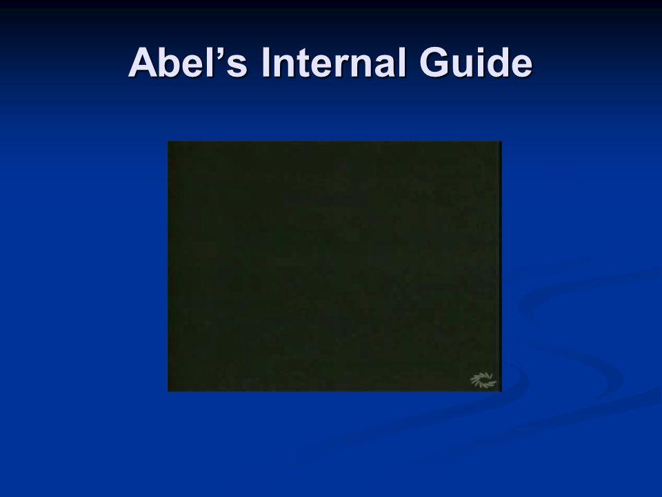 Abel's Internal Guide