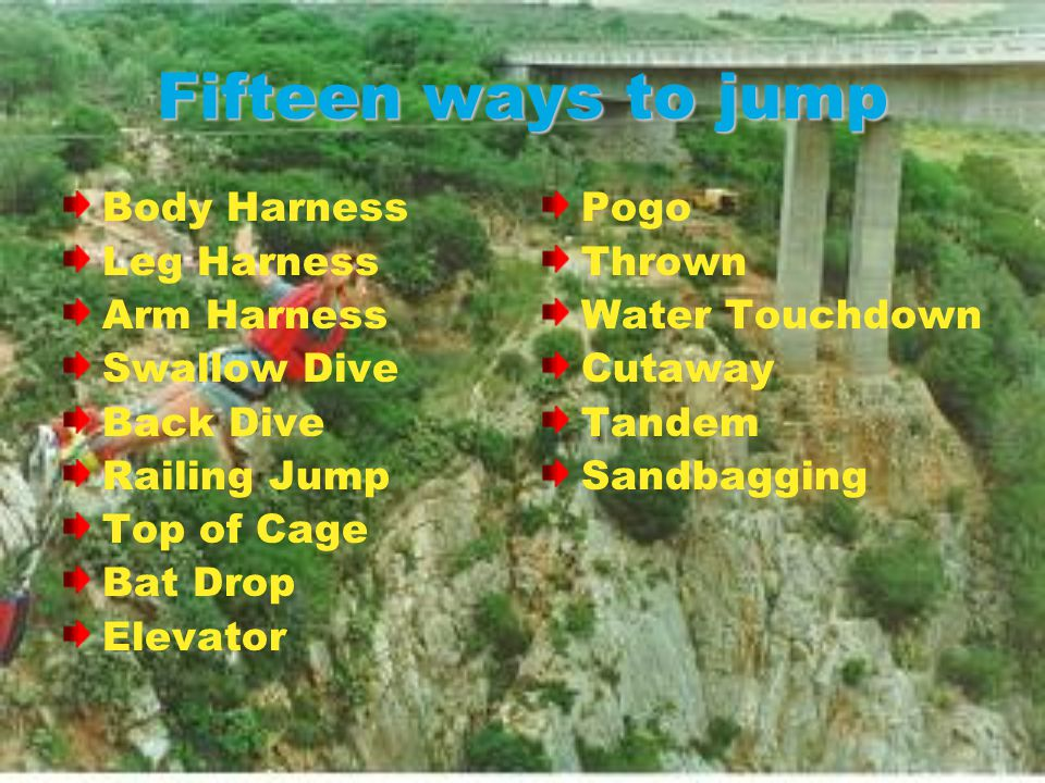 Fifteen ways to jump Body Harness Leg Harness Arm Harness Swallow Dive Back Dive Railing Jump Top of Cage Bat Drop Elevator Pogo Thrown Water Touchdown Cutaway Tandem Sandbagging